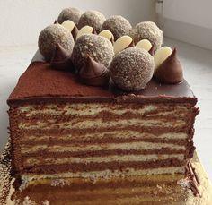 Řezy jsou poměrně jednoduché, jsou to vlastně piškotové pláty promazané čokoládovým krémem a polité polevou.
