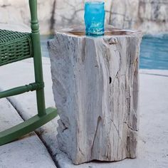 Petrified Wood Stumps (Table) - Top Polished by Garden Age Supply