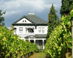 12 beautiful places to stay in Oregon wine country | With scenic bed and breakfasts and stately old hotels, there's no shortage of places to stay in Willamette Valley wine country.