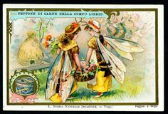 Liebig S576 - Children in Insect Costumes #1 by cigcardpix, via Flickr