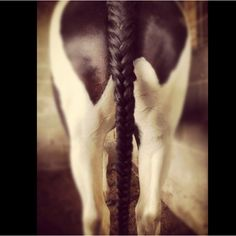 Horse tail, Fish tail