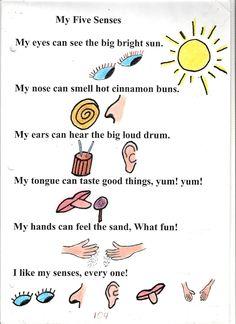 five senses poems - tamgana
