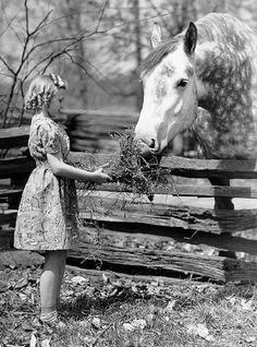 She looks like me at my Missouri home; would've been nice to have the horse too, though!