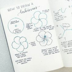 First: Happy Friday! Second: Thank you so much for all of the suggestions for flower tutorials! I haven't even read through all of… Doodle Drawings, Easy Drawings, Doodle Art, Flower Drawing Tutorials, Flower Tutorial, Drawing Flowers, Flower Drawings, How To Draw Flowers, Hibiscus Flower Drawing