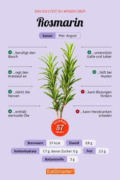 Rosmarin You should know about rosemary Healthy Life, Healthy Eating, Food Facts, Diet And Nutrition, Nutrition Store, Complete Nutrition, Holistic Nutrition, Nutrition Education, Superfoods