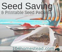 Printable seed packets. Personally, I prefer cursive. ;-)