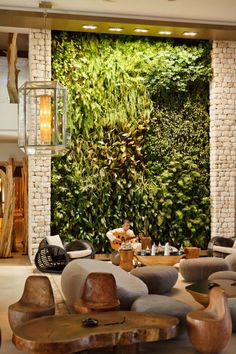 STONE FURNITURE AND LIVING WALL