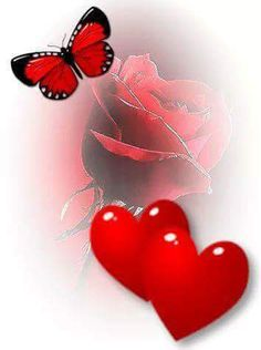 🙌🌹💘♾💑💏👫♾💘😍😙 Valentine's Working day is taken into account considered one of my beloved events to share with my family and unique buddies Specially to share Butterfly Wallpaper, Heart Wallpaper, Love Wallpaper, Beautiful Love Pictures, Love You Images, Heart Pictures, Heart Images, Hearts And Roses, Red Roses