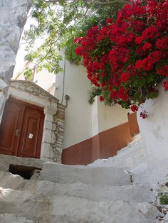 Floral passage on Symi island in Greece Rhodes, Places To Travel, Places To See, Places Around The World, Around The Worlds, Portal, Beautiful World, Beautiful Places, Stairway To Heaven
