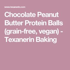 Chocolate Peanut Butter Protein Balls (grain-free, vegan) - Texanerin Baking