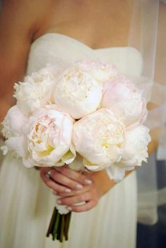 ivory peony, use purple for brides maids. Only if I can't get violets.