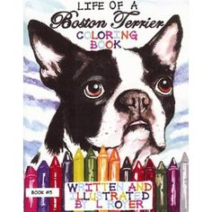 I love Boston Terriers :)