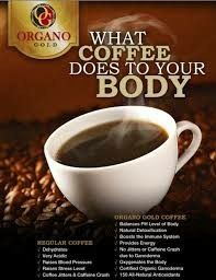 my Organo Gold Coffee! Visit my website for more info on how to buy retail or wholesale! Or Email : Herbalife, Coffee Jitters, Health Fitness Quotes, Raise Blood Pressure, Coffee Business, Coffee Is Life, Great Coffee, Coffee Cafe, Natural Cosmetics