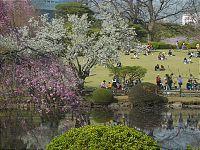 Tokyo Travel: Parks and Gardens of Tokyo http://www.japan-guide.com/e/e3034.html