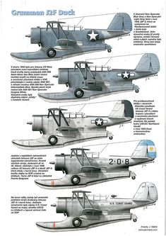 The Grumman Duck was one of the most versatile planes of it's era.