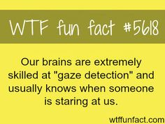 Our brains can detect if someone is staring at us - WTF fun fact | See more DIY videos and hacks here: http://gwyl.io/