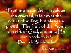 Dietrich Bonhoeffer quote on the Fruit of the Spirit. Wise Quotes, Quotable Quotes, Faith Quotes, Inspirational Quotes, Dietrich Bonhoeffer, The Cost Of Discipleship, Better Is One Day, Joyce Meyer Quotes, Pretty Quotes