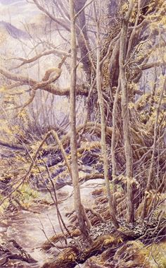 Alan Lee - The Old Forest