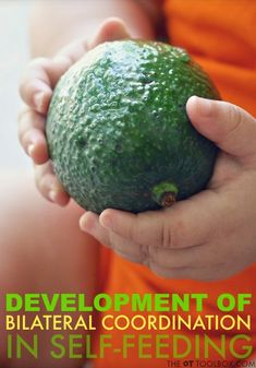 Development of bilateral coordination skills in feeding occurs throughout childhood. #finemotoractivities #bilateralcoordination #feedingtherapy #toddler #selfcare #selffeeding #occupationaltherapy #occupationaltherapyactivities #theottoolbox