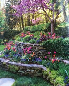 Awesome Tips: Cottage Backyard Garden Landscaping backyard garden lights paths.Country Garden Ideas Veggies garden ideas for beginners solar lights. Sloped Backyard, Sloped Garden, Terraced Landscaping, Backyard Landscaping, Terraced Backyard, Backyard Retreat, Landscaping Ideas, Garden Oasis, Terrace Garden