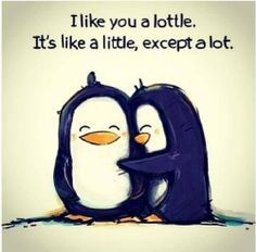 The cute things you say to each other that just sound so dumb if you were to say it to someone else. #wag #penguin