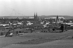 Blick von Königswiesen auf Regensburg (C) Stadt Regensburg
