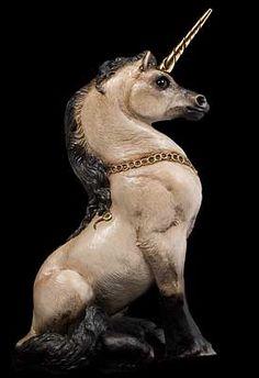 Young Unicorn - Silver Grulla