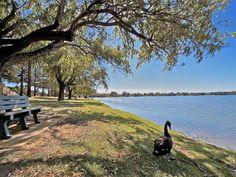 Parklands, Lake Monger, Perth, Western Australia