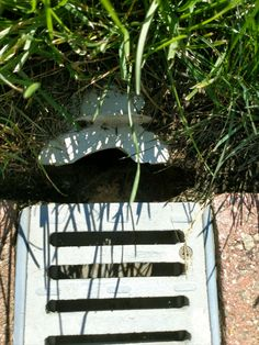 Be sure to install your trench drain correctly. Call our experts today for assistance at M-F. Trench Drain Systems, Drainage Channel, Drainage Solutions, Decks, Pools, Garden Tools, Garage, Water, Courtyards