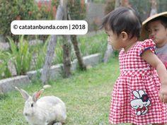 Cerita liburan bersama keluarga di Ciwidey Bandung.  #catatanbunda #bandung #ciwidey #liburankeluarga #liburan #ceritaliburan #blogging #blogpost