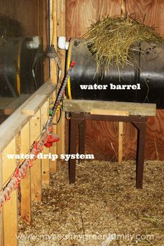Chicken-Coop-Water-Barrel.jpg 2 212×3 318 pikseliä