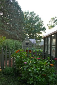 The Pickery Rabbit Run Cottage in the background of the garden.  Love the big people door!