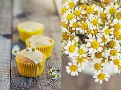 Mandarin and camomile cupcakes   Flickr - Photo Sharing!
