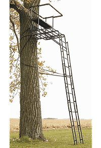two man ladder stand