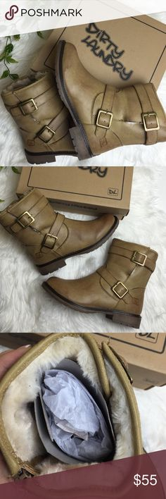 """NWT moto buckle boots Brand new with box Lined Bootie with buckle detail Shaft measures approximately 7.75"""" from arch Heel measures approximately 1.25"""" Platform measures approximately 0.5 inches Boot opening measures approximately 10.5"""" around Closed Toe Dirty laundry Shoes Ankle Boots & Booties"""