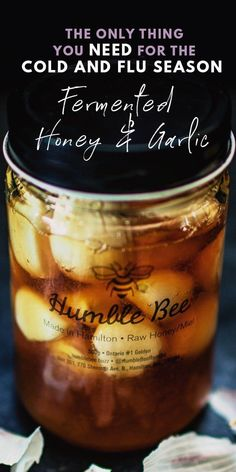 Make this fermented garlic honey for its immune boosting benefits or as a delicious condiment to your healthy snacks or weight loss recipes! This fermented honey garlic is easy to make and is great fo Fermented Honey, Fermented Foods, Garlic Recipes, Honey Recipes, Garlic And Honey Benefits, Ayurveda, Healthy Snacks, Healthy Recipes, Whole30 Recipes