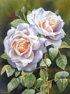 white roses by Doris Joa