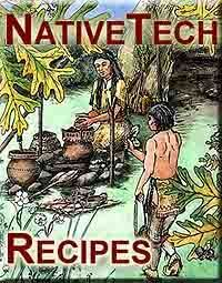NativeTech: Indigenous Food and Traditional Recipes - fry bread recipe for Nez Perce tribe (Kaya - American Girl)
