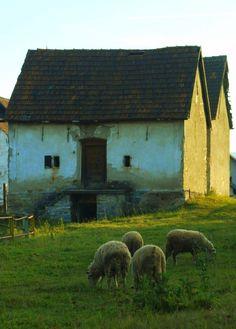 Strba, Slovakia village Country Interiors, Barns, Folk Art, Architecture, Pets, World, Places, Nature, Painting