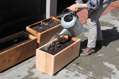 Kinfolk Magazine - Journal - Container Gardening