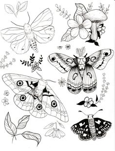 Healthy meals for dinner easy meals ideas free Tattoo Sketches, Art Sketches, Tattoo Papillon, Butterfly Sketch, Butterfly Template, Monarch Butterfly, Moth Drawing, Tattoo Flash Sheet, Line Art Tattoos