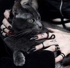 Sub Zero Gothic jewelry black cat Wiccan, Magick, Witchcraft, Black Mode, Maleficarum, Yennefer Of Vengerberg, Dark Witch, Witch Aesthetic, Black Cat Aesthetic