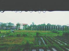 Hujan meninggalkan tetesan air yang melekat pada pagar besi berkarat hingga jatuh dan tiada.