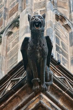 gargoyles on St Vitus Cathedral at Prague Castle,  Prague, Czech Republic by jitenshaman, via Flickr