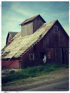 Wish I were rich and I would restore old barns...
