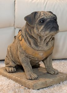 The most fantastic life size model Pug you will ever see  -  a British design and wholly British made. Amazing Pug which will be the envy of all who see it, great for indoors or out (frostproof).