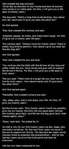 Life explained