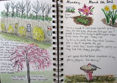 KATE'S CORNER- garden journal