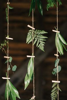 22 Fab Fern-Inspired Wedding Decor Ideas via Brit + Co