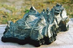 Suiseki – Uma arte com 2000 mil anosdeidade. | Aido Bonsai
